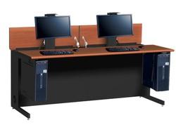 Flex InSight Desk